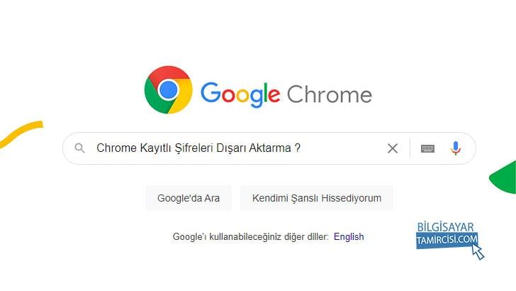 Chrome Kayıtlı Şifreleri Dışarı ve İçeri Aktarma
